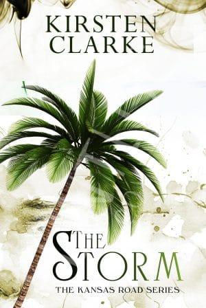 storm Book Cover Art